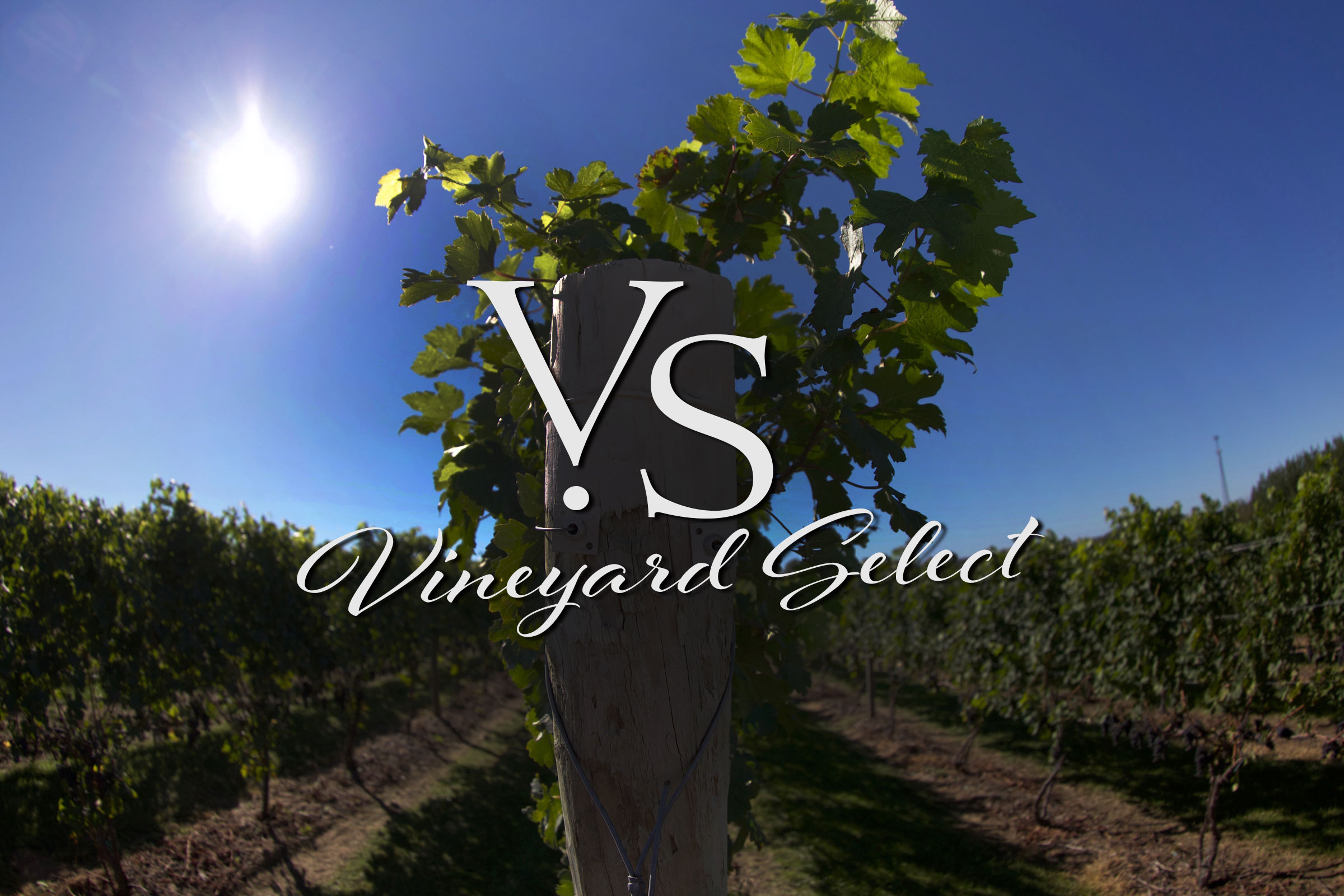 vineard select